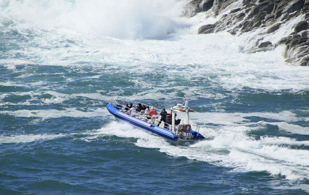 1 hr Jet boat trips around Ramsey Island