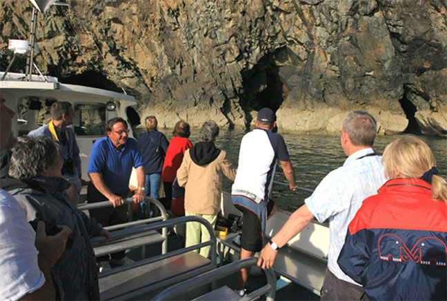 Evening Puffin and Shearwater boat trips islands cruise