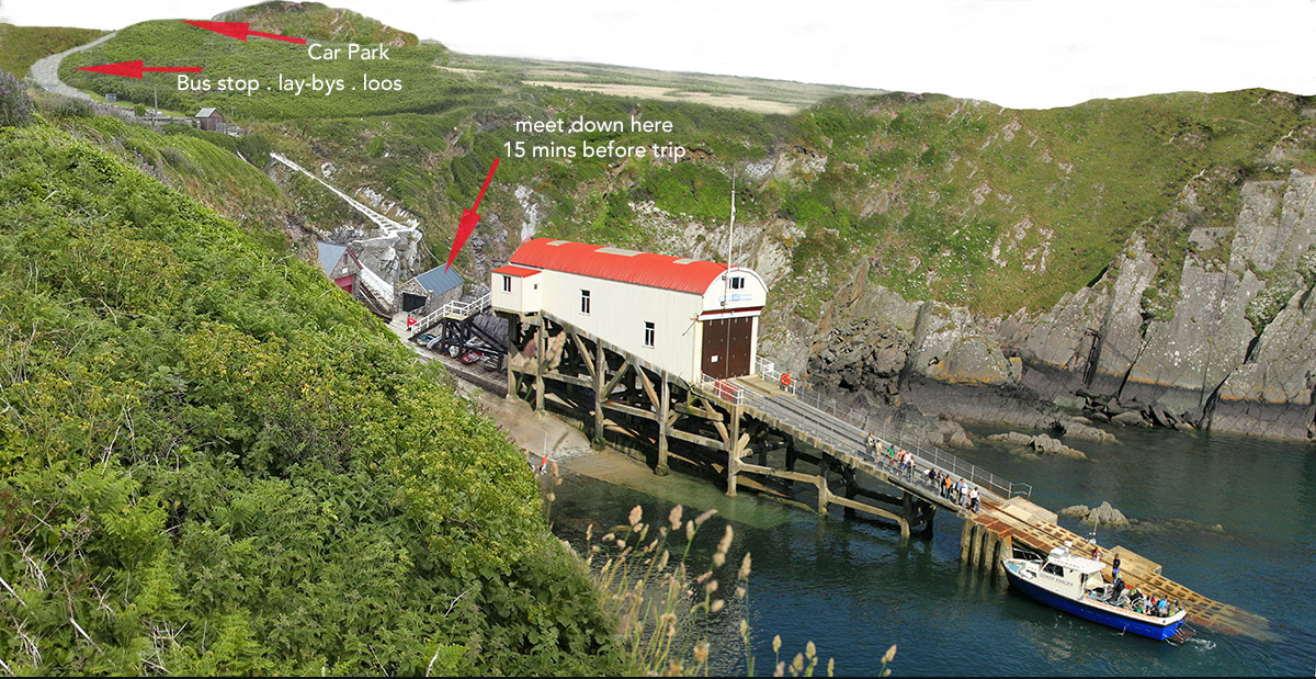 Ramsey Island boat trips St Justinians Lifeboat Station