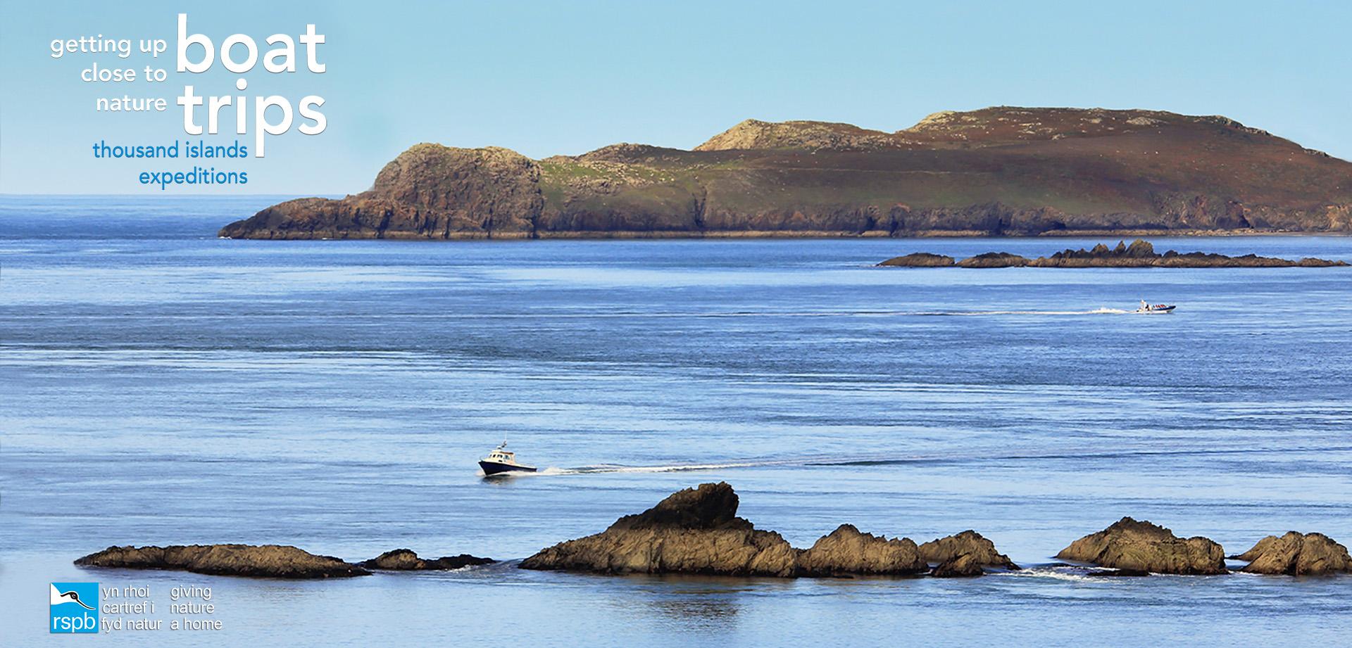 Boat trips Ramsey Island