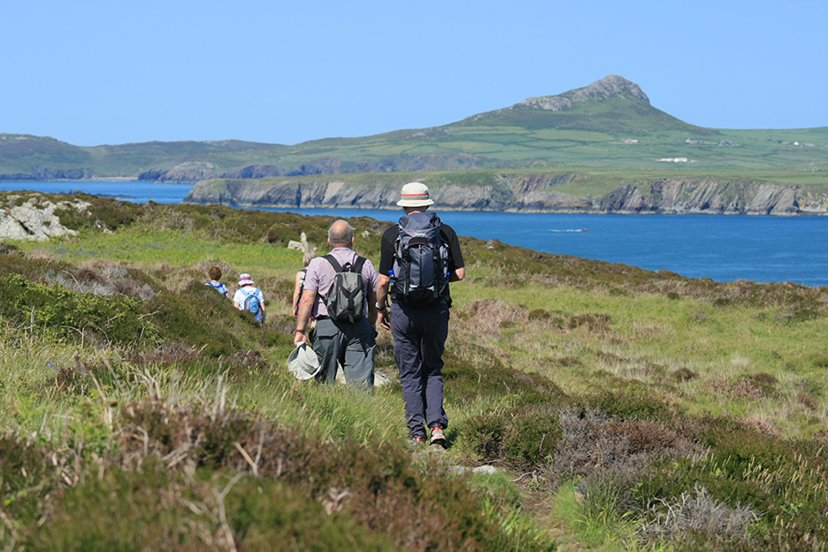 Walkers on the Ramsey Island trail off the Pembrokeshire Coast