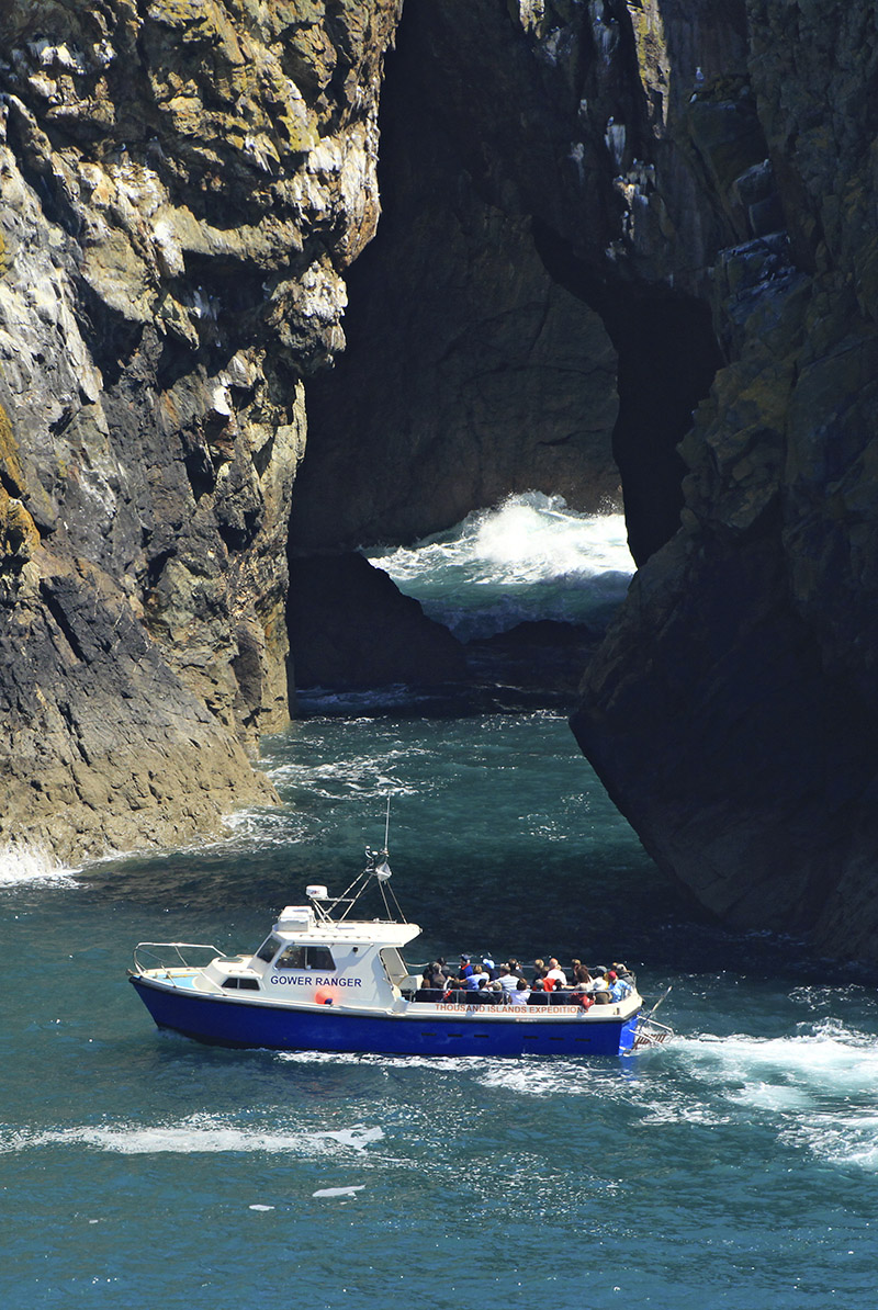Boat trip around Ramsey Island RSPB Nature Reserve